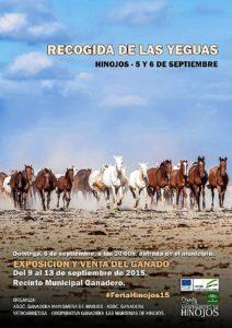 RECOGIDA YEGUAS 2015