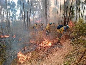 incendio zalamea la real EMpH-