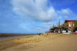playa isla canela 883