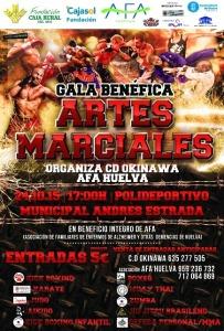 Cartel de la gala solidaria de artes marciales.