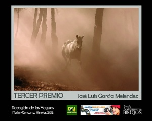 Hinojos  Tercer Premio Yeguas xs