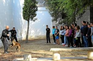 unidad canina en La Palma del Condado 660prensa