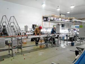 DSC_0202Visita Empresario Belga