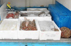 Venta ambulante pescado Villanueva de los Castillejos (1)