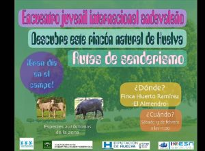 cartel_encuentrojuvenil