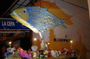 entierro sardina ayamonte 6253