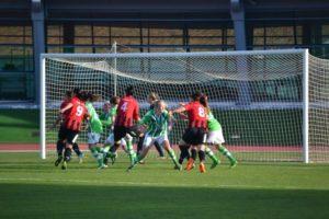 Wolfsburgo-Fundación Cajasol Sporting.