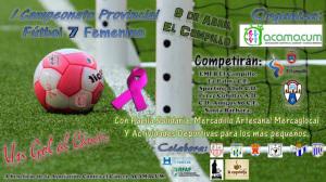 Campeonato Provincial de fútbol femenino.