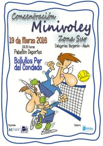 cartel minivolley
