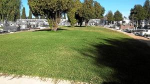 Fosa Cementerio de Huelva2015