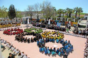 olimpismo escuelas la palma del condado (3)