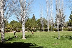 parques caninos Huelva