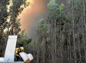 incendio en fuente de la corcha en beas provincia de Huelva (2)