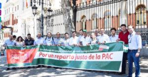08-06-16.PAC_.Madrid.ok_-642x336