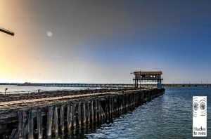 muelle tharsis 2
