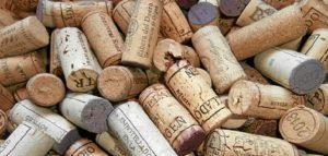 Curso vinos dos
