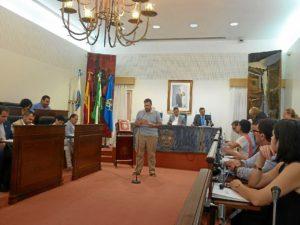 pleno julio diputacion huelva (1)