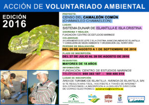 Voluntariado 2016