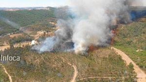 incendio nerva 8 de agosto (1)