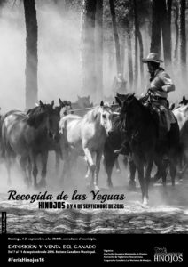 RECOGIDA YEGUAS 2016