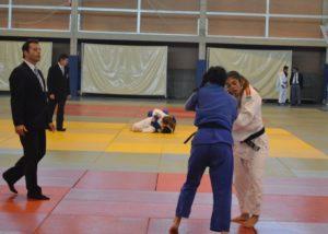 Torneo infantil y cadete de judo.