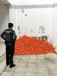 mandarinas robadas cartaya