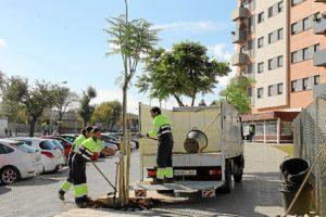 plan empleo municipal Huelva