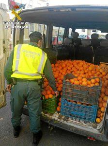 Fruta robada y recuperada por la Guardia Civil