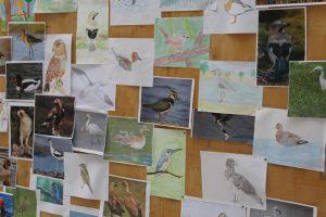 aves IES Estuaria