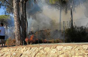 Incendio en campo de golf de La Dehesa 1