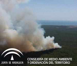 (Foto: Plan Infoca)