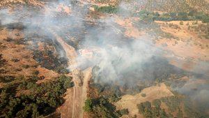 Incendio en La Nava (2)