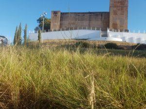 PSOE Cartaya reclama arreglos en zona Castillo (3)