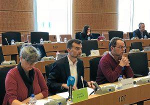 IU gasoducto Parlamento Europeo (2)