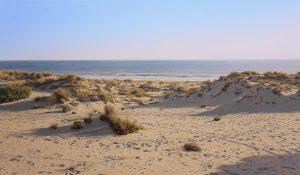 'Dunes by the sea', una pintura de Antonio Cazorla.