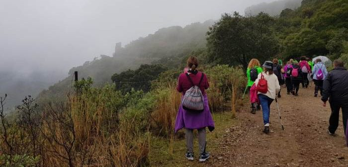 Aracena Por Los Caminos Propone Cuatro Rutas De Senderismo Para 2019