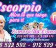 ESCORPIO HOY – Horóscopo diario del día 25 lunes de enero 2021 – Tarotistas y Vidente