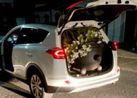 Pillados llevándose los maceteros de una plaza en un coche robado